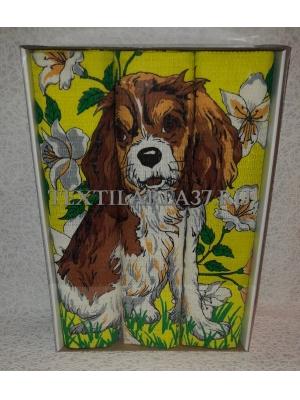 Набор вафельных полотенец подарочный «Год Собаки N21»